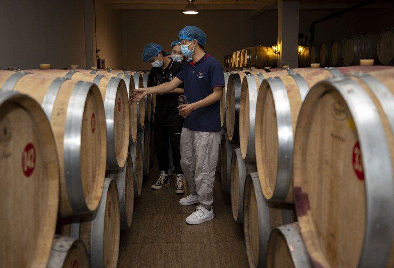 位於寧夏賀蘭山東麓的一酒莊的橡木桶陳釀區,今年七月初酒莊工作人員(前)在向寧夏大學食品與葡萄酒學院葡萄係的學生展示陳釀所用橡木桶。(新華社)