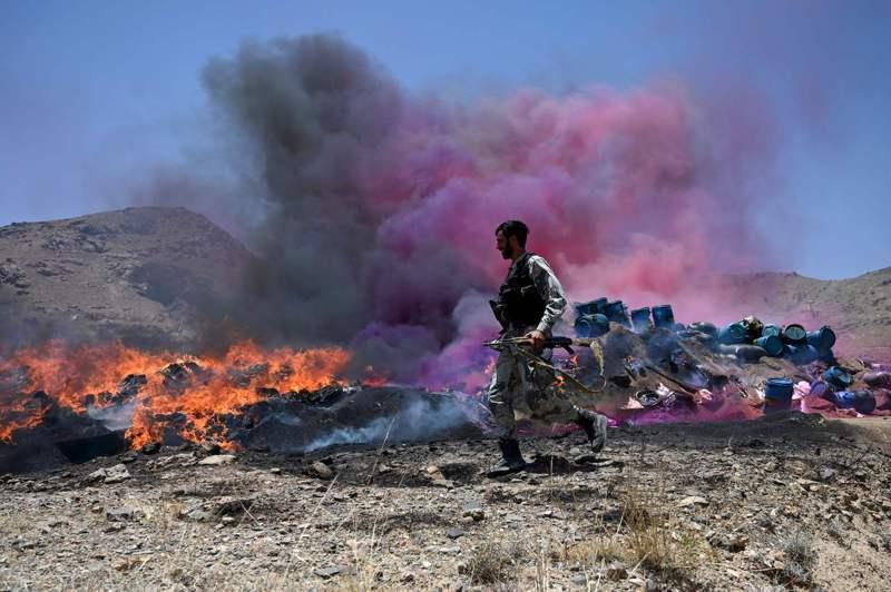 專家認為,隨著美國等西方部隊撤離,阿富汗的反毒行動將變得更加困難。法新社