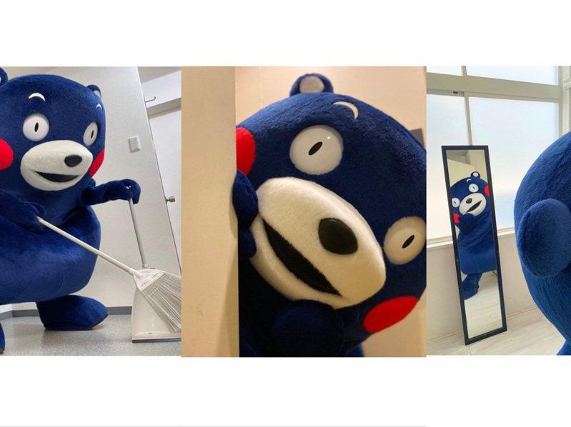 日本吉祥物熊本熊趕時髦,換上東京奧運「阿波藍」為選手加油。圖/取自Twitter