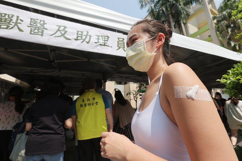 多數的臨床獸醫至今尚未施打新冠肺炎疫苗。聯合報系資料照/記者許正宏攝影