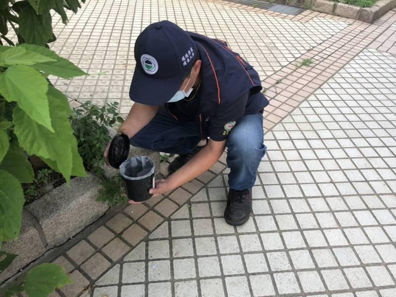 桃園市環保局設置誘卵桶,觀察全市3百多處病媒蚊產卵情況。圖/環保局提供
