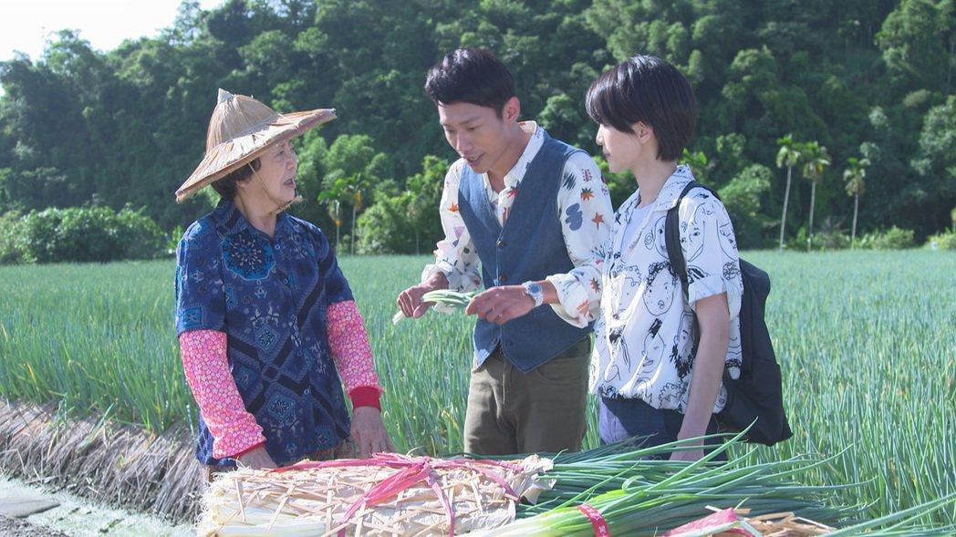 王滿嬌(左起)、張哲豪、楚宣為「黃金歲月」到宜蘭三星蔥田取景。圖/民視提供