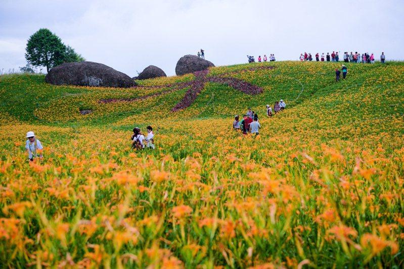 花蓮南區有全台最大的金針花海,每年吸引大批遊客上山遊花海。圖/花蓮縣政府提供