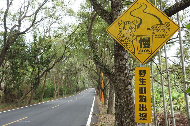 萌版石虎路牌,其實是一篇又一篇的墓誌銘,代表曾有石虎在此遭路殺。記者賴香珊/攝影