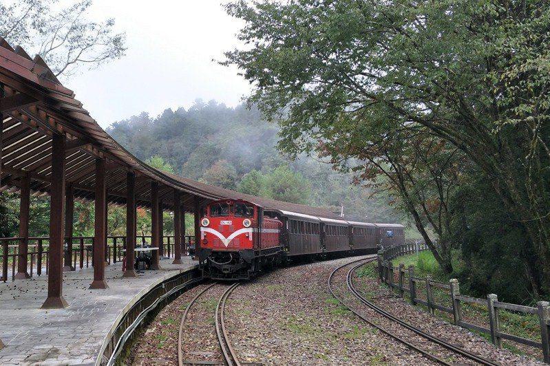 阿里山火車是著名觀光景點。圖/林鐵處提供