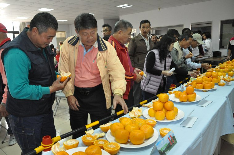 各地的水果評鑑中,「糖度」一直被列為指標項目,農業縣首長行銷在地水果時,也常標榜...