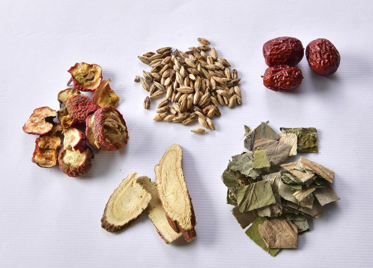 中藥材:山楂、炒麥芽、大棗、生甘草、荷葉。圖/幸福文化 提供