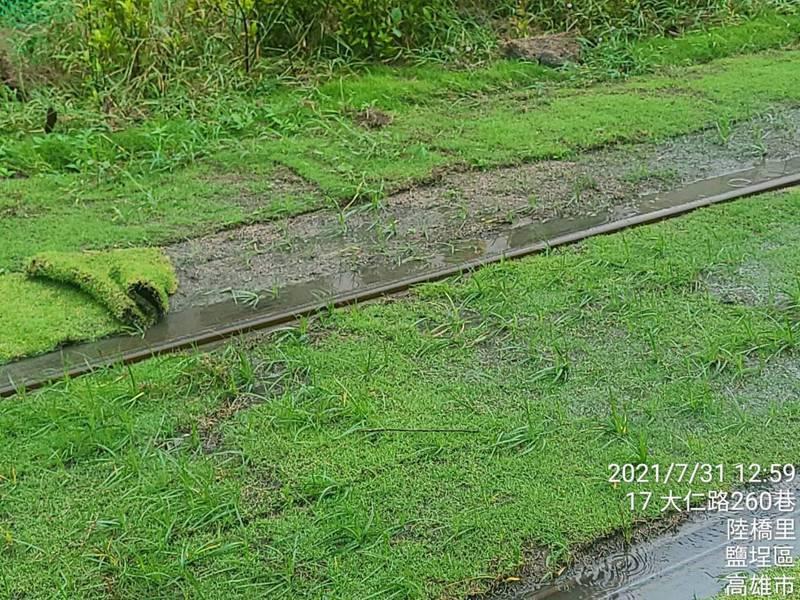 新栽種的草皮根部還不穩固,大雨沖刷後掀起位移,圖/高捷公司提供