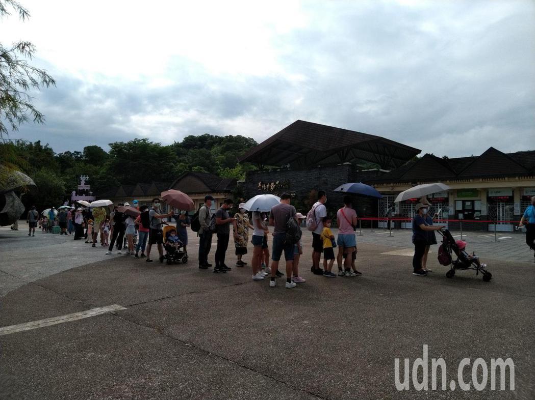 台北市立動物園恢復開園第一天,上午八點多,許多民眾攜家帶眷出遊,九點開放入場時還...