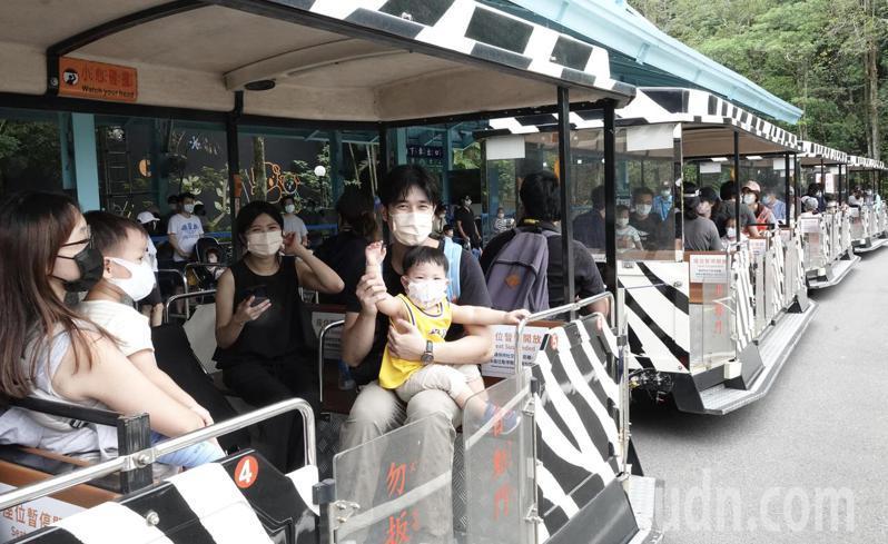 台北市立動物園上午自三級警戒封園77天後重開放,為落實防疫措施而遊園列車載運量原則減半、梅花座,但家人可同坐在一起搭乘遊園。記者黃義書/攝影