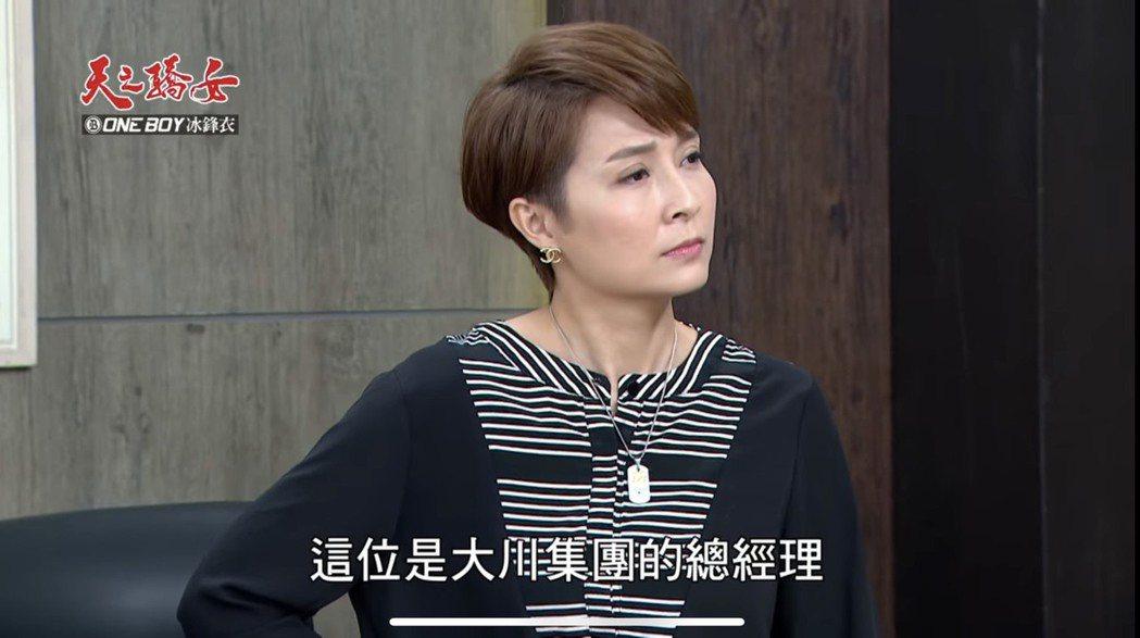 李珞晴在8點檔「天之驕女」中飾演議長的大老婆木村富美。圖/摘自youtube