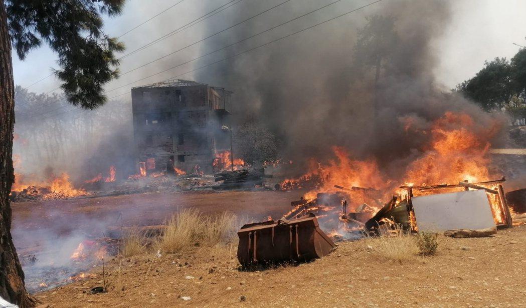 土耳其7月28日以來出現98處野火火場,大部分發生在南部,已知造成6人死亡、數百...