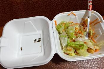 他花900元買健康餐吃到「蟑螂沙拉」 店家卻甩鍋:在消毒