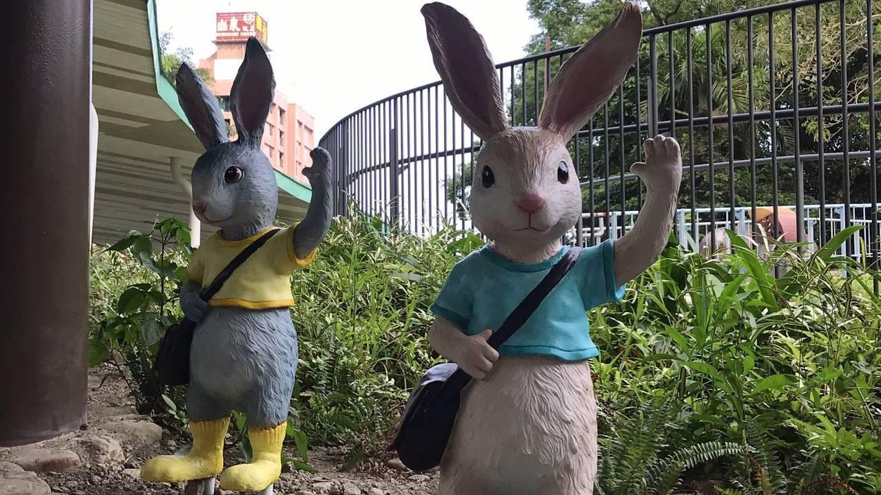 「嗨,你好」,位於圍牆上的招手小兔向大家問好。 圖/讀者提供