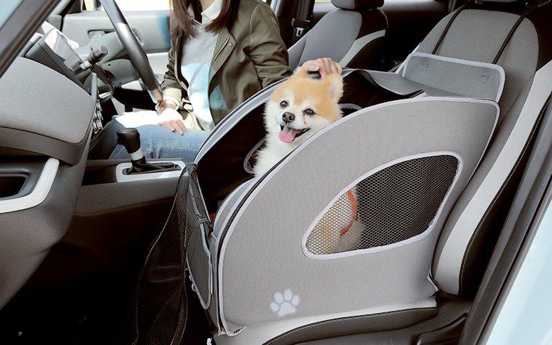 前座的寵物安全座椅也可以讓駕駛隨時觀察到狗狗。 摘自Honda