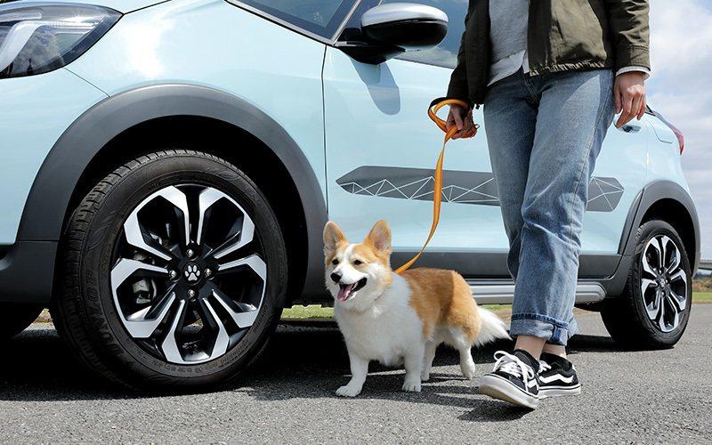 Honda於日本市場為FIT在內的旗下小車推出Honda Dog狗狗套件。 摘自...