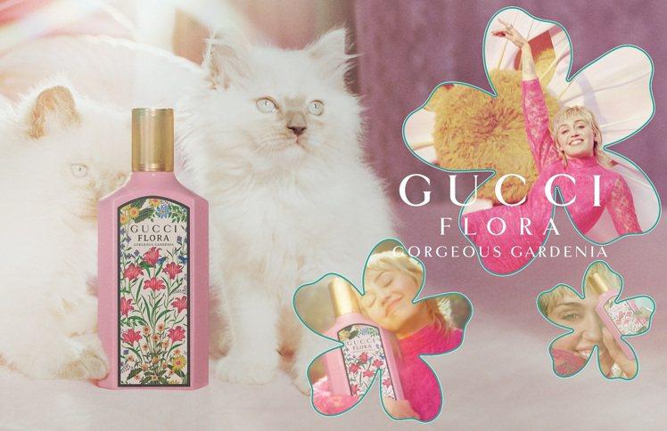GUCCI幻夢梔子花女性淡香精廣告。圖/GUCCI提供