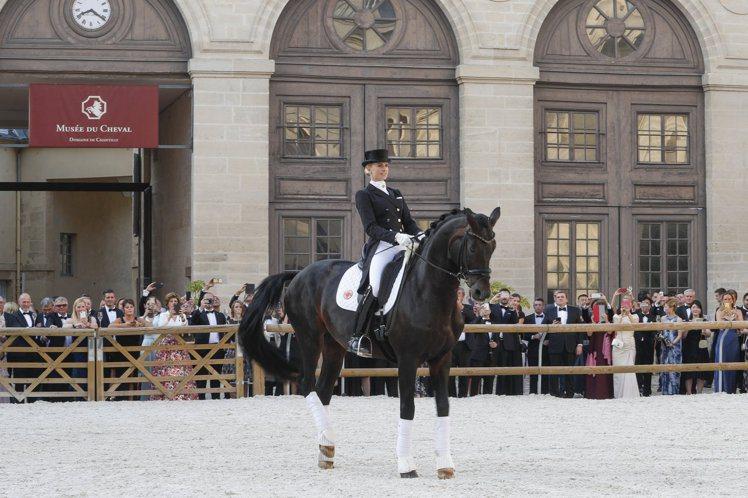 需要與有生命動物共同進行的馬場馬術(Dressage),高度需要自制與統御能力。...