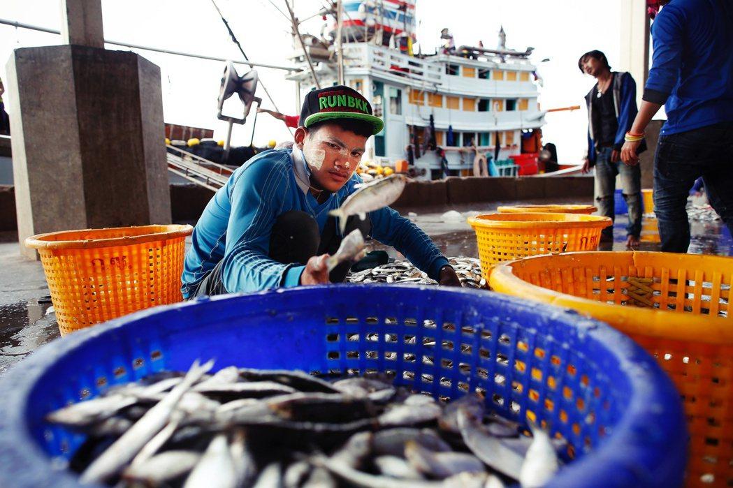 泰國龍仔厝海鮮市場過去就曾多次被揭發剝削有證 / 無證移工、超時工作和人口販賣等...