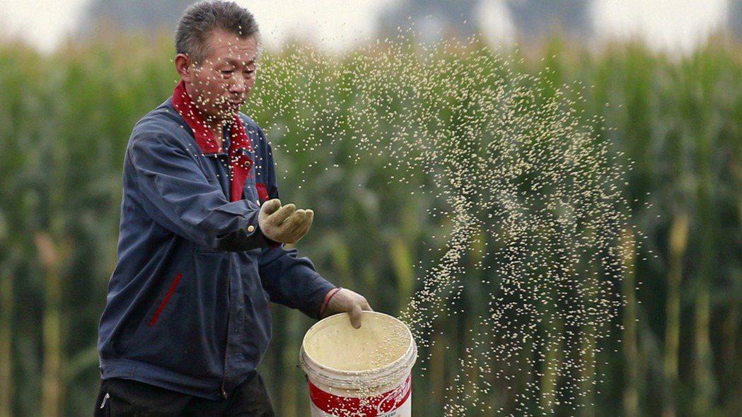 FAO 7月糧價指數已連續第二個月下跌,有助舒緩全球通膨壓力。路透