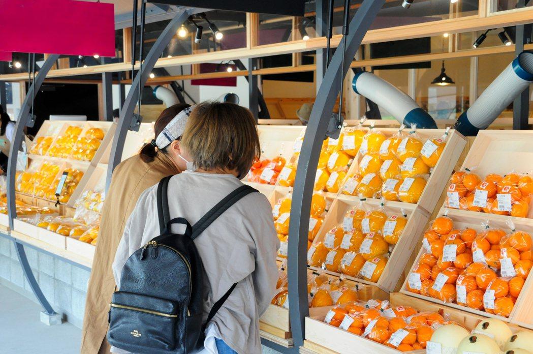 VISON市集每日由在地生產者直送新鮮食材。 圖/ヴィソン多気株式会社提供
