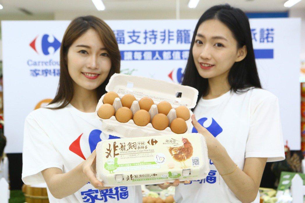 台灣家樂福承諾從2025年起只販售「非籠飼雞蛋」。 圖/台灣動物社會研究會提供
