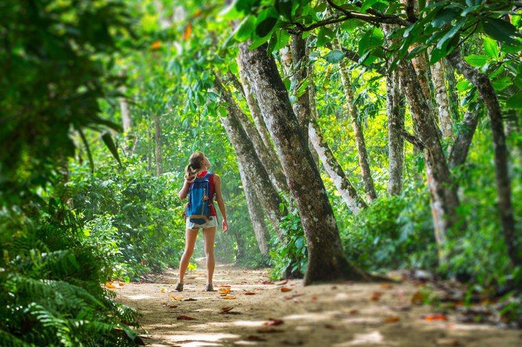到森林中運動,甚至只是坐著,都可以降低血壓以及和壓力相關的激素。圖/123RF