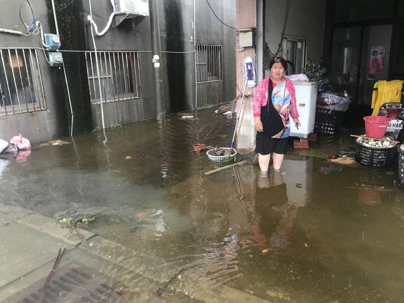 雲林沿海地區積水嚴重,居民表示,近十年不曾見過這樣的景象。記者黃仲裕/攝影