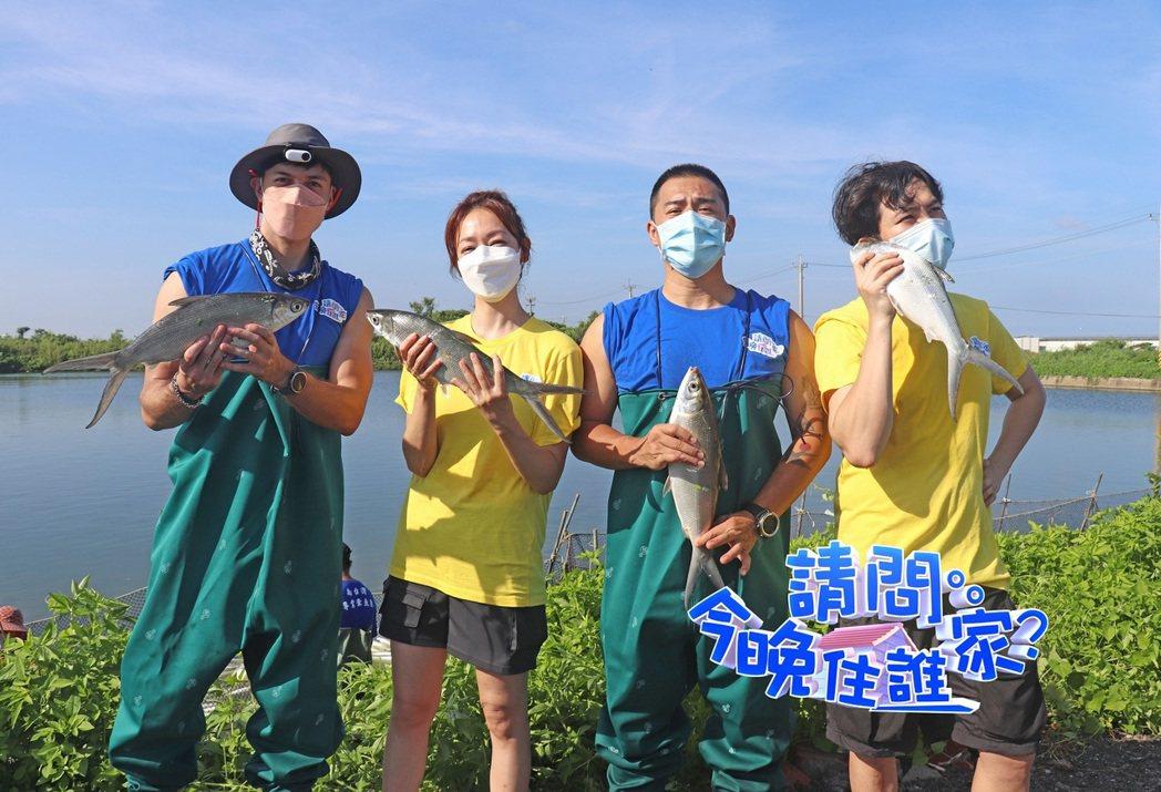 潘慧如(左二)、楊銘威(右一)跟著竇智孔(右二)、舞陽(左一)在台南打工捕虱目魚