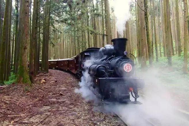 阿里山林業鐵路明起恢復營運,乘車人數持續降載控管中。 圖/翻攝自林務局阿里山林業...