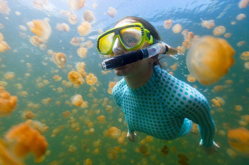 水母湖是帛琉浮潛熱門景點之一。圖/可樂旅遊提供