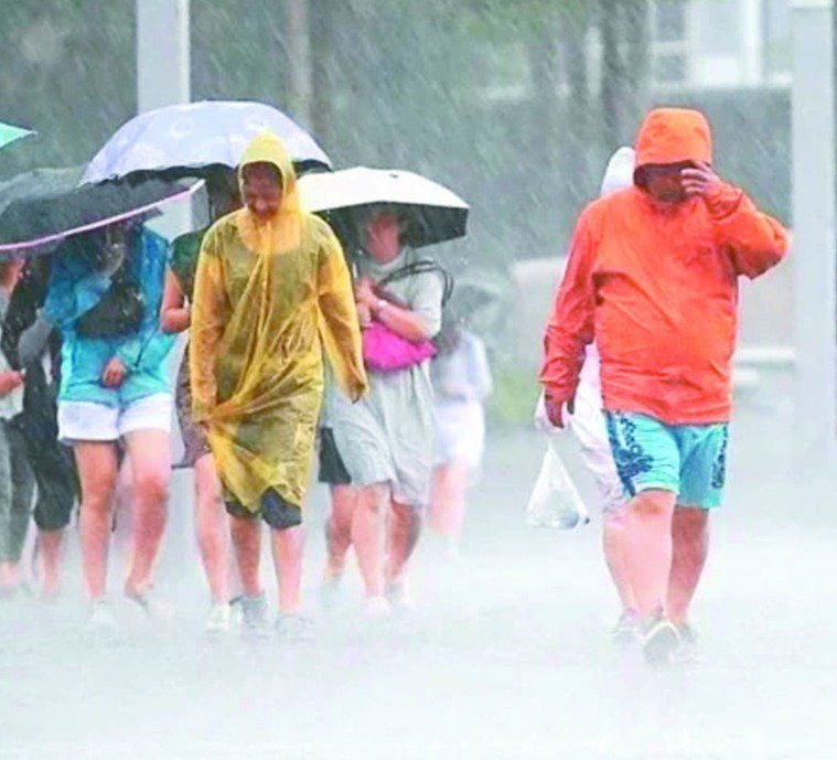 大雨過後清掃家園時,醫師呼籲,一定要穿上雨鞋,不可赤腳,最好也要戴上手套,保護雙...
