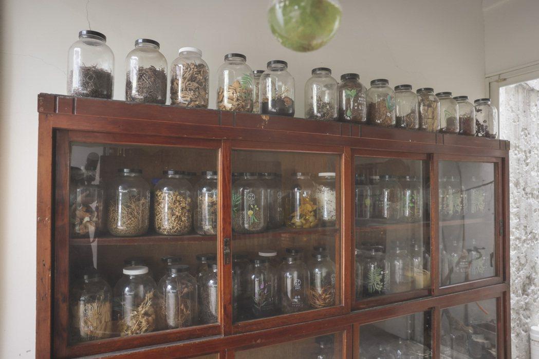 辦公室隔壁設了廚房,陳列著各種瓶瓶罐罐。記者王聰賢/攝影