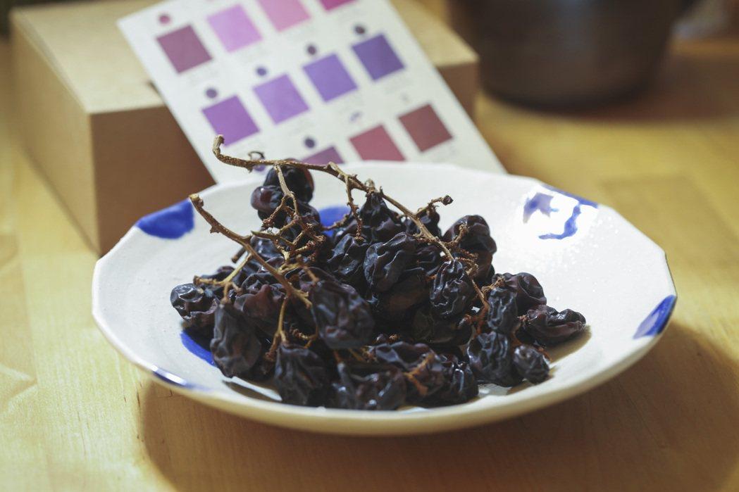 整串烘乾的卓蘭葡萄。記者王聰賢/攝影