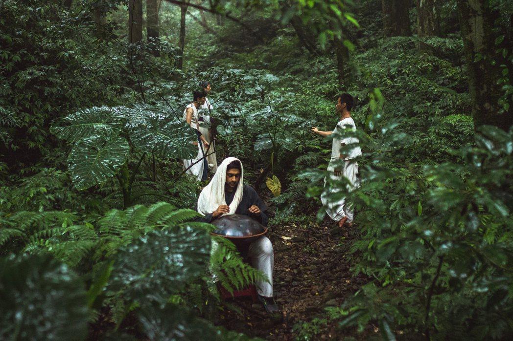 種籽舉辦東眼山─回森林家活動。圖/種籽提供