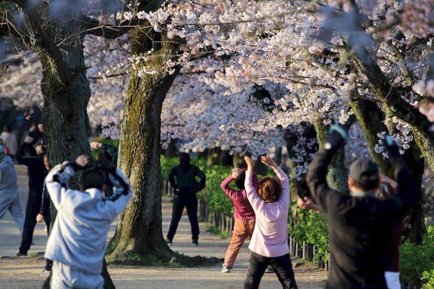 戶外散步、運動10~20分鐘即可補充維生素D。 圖/PAKUTASO