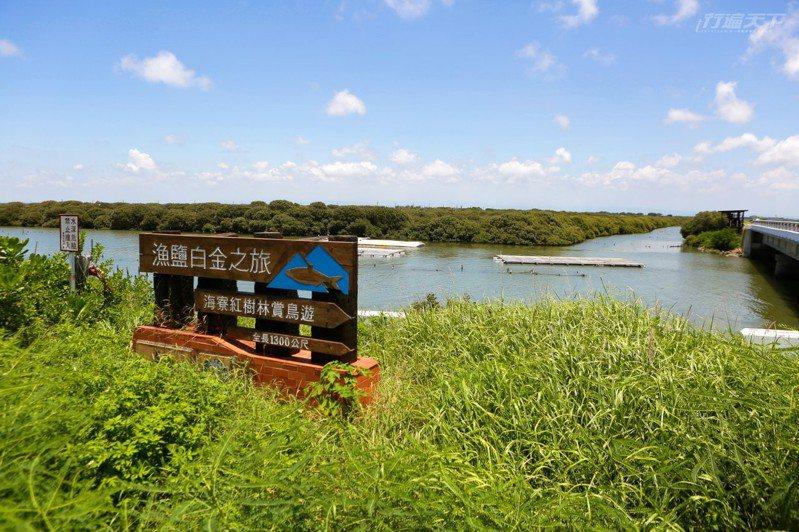 位於七股溪出海口旁的茂密生態秘境是海寮紅樹林,設有觀鳥亭,此處以海茄苳為主,林中有許多水鳥棲息,是賞鳥的好去處。