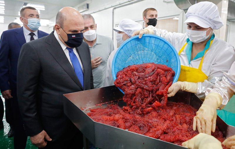 俄國總理米舒斯京上月訪問南千島群島的擇捉島,俄、日曾有共識要在島上經濟合作。歐新社