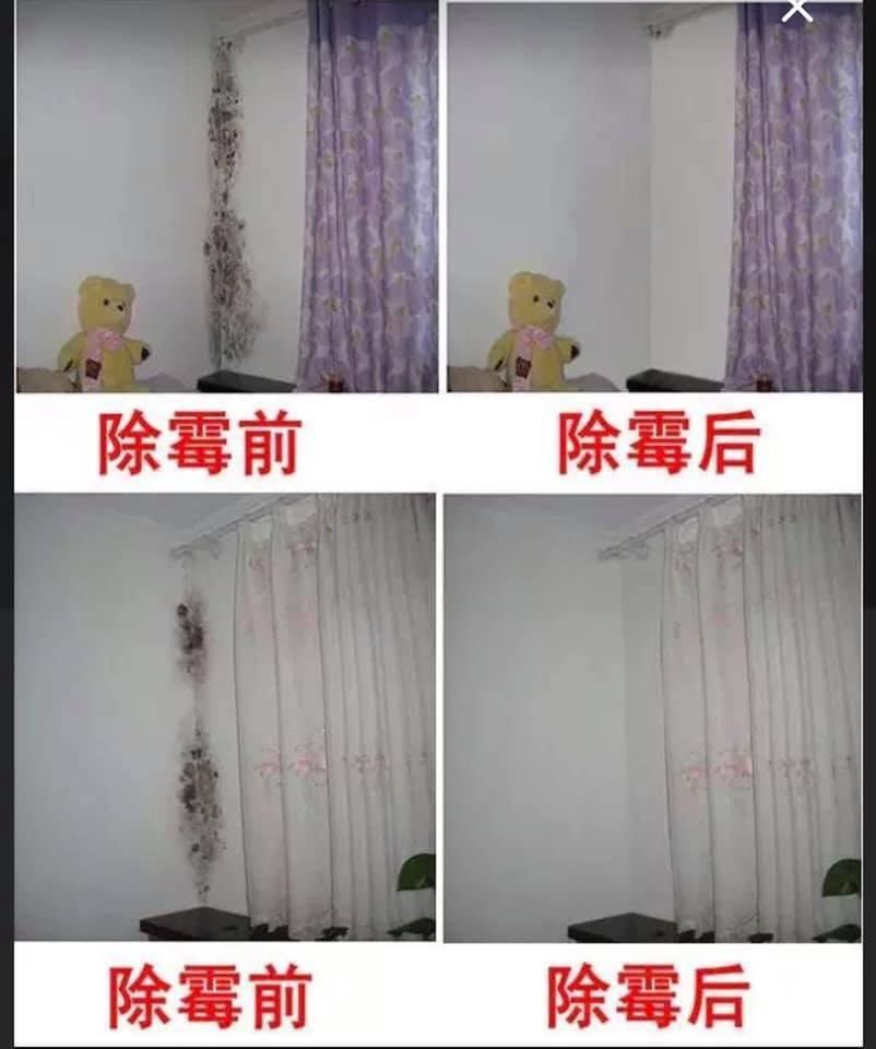 房客租屋處牆壁發霉,急叩房東。圖擷自臉書「爆系知識家」