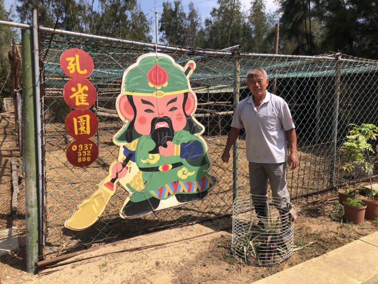 退休教師李策勵花了7年多,打造自己的農場與孔雀園,不少人慕名來參觀。 圖/蔡家蓁...
