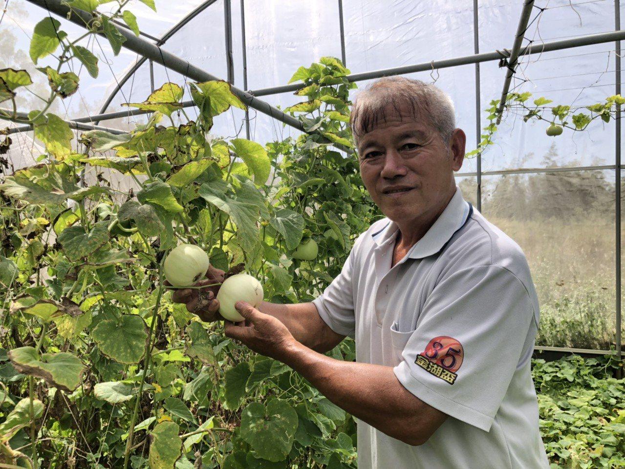 退休教師李策勵拿粉筆的手,現在改拿鋤頭,打造自己的開心農場。 圖/蔡家蓁 攝影