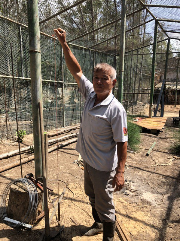 退休教師李策勵說,他的棚架搭得筆直,靠的就是手上這個簡易的垂直線。 圖/蔡家蓁 ...