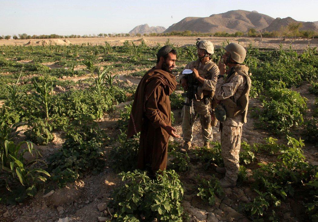 戰爭中期,阿富汗西南激戰最兇的赫爾曼德省,美軍在阿富汗隨軍翻譯幫助下,與地方的西...