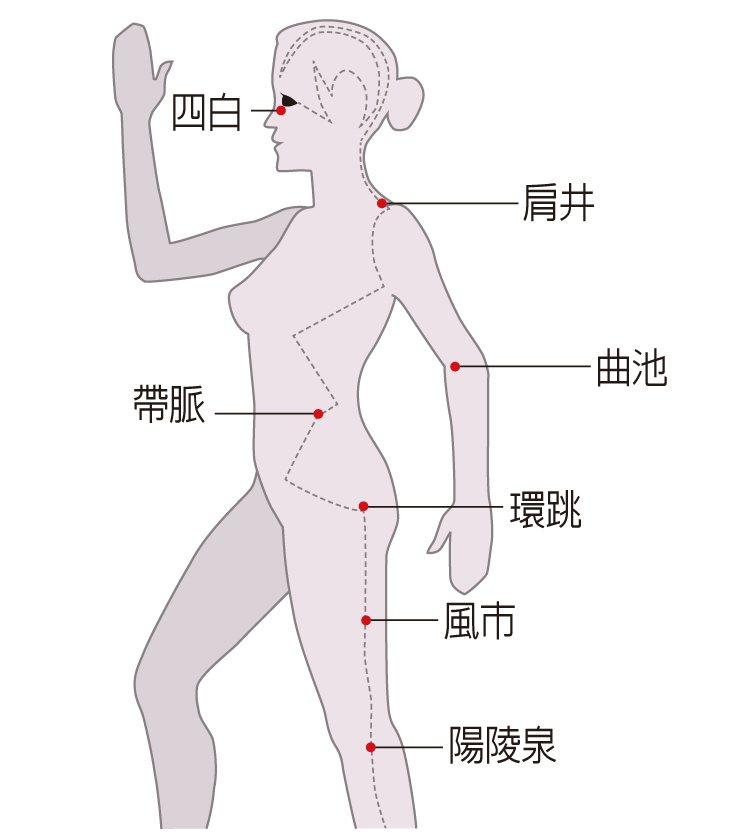 膽經經絡是身體重要的穴道,可以由上往下按壓。