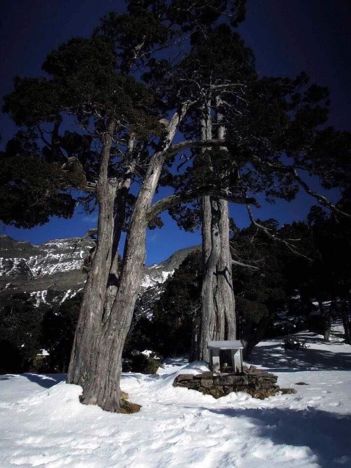 圖/雪霸國家公園管理處提供