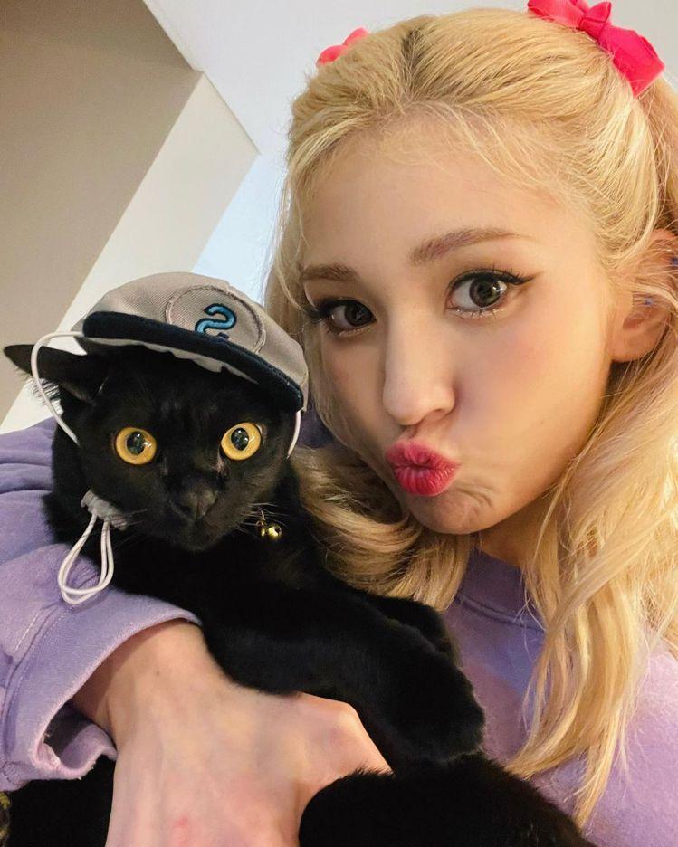 SOMI抓著愛貓玩自拍,不管毛孩一臉驚恐貌,還嘟嘴裝可愛。圖/摘自instagr...