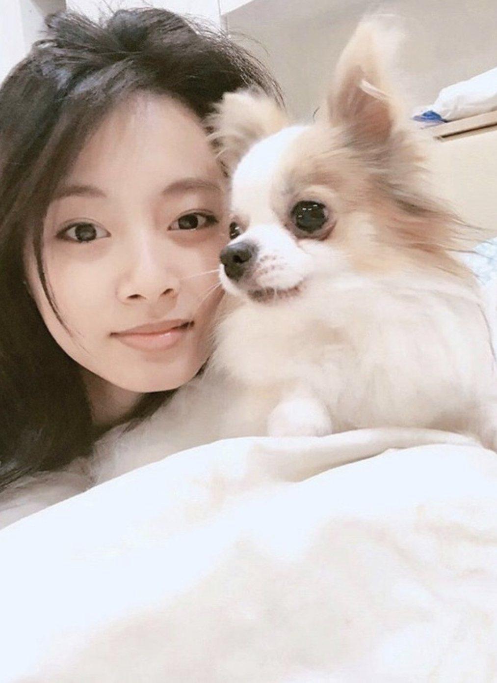 周子瑜與愛犬酷吉。圖/取自IG