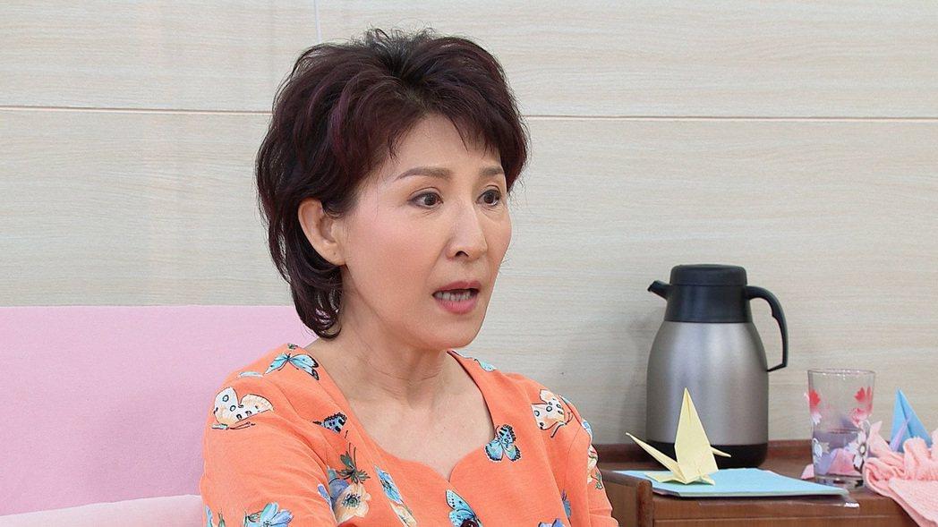 趙心妍在「黃金歲月」飾演一名精神錯亂的媽媽。圖/民視提供