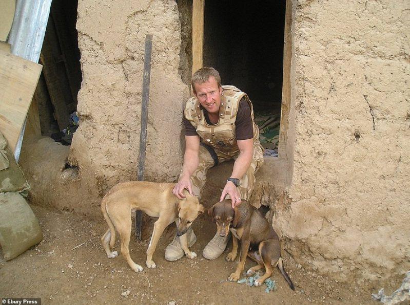 英國皇家海軍陸戰隊退役士官法辛在阿富汗首都喀布爾經營動物收容所,近日極力爭取帶同他的所職員、職員的家屬與2百隻貓狗一同撤退。原本堅持動物不能先走的國防大臣華萊士25日宣布,只要法辛帶著動物抵達喀布爾機場,官員將「為他的包機找到一個時間帶」。畫面翻攝:MAILONLINE