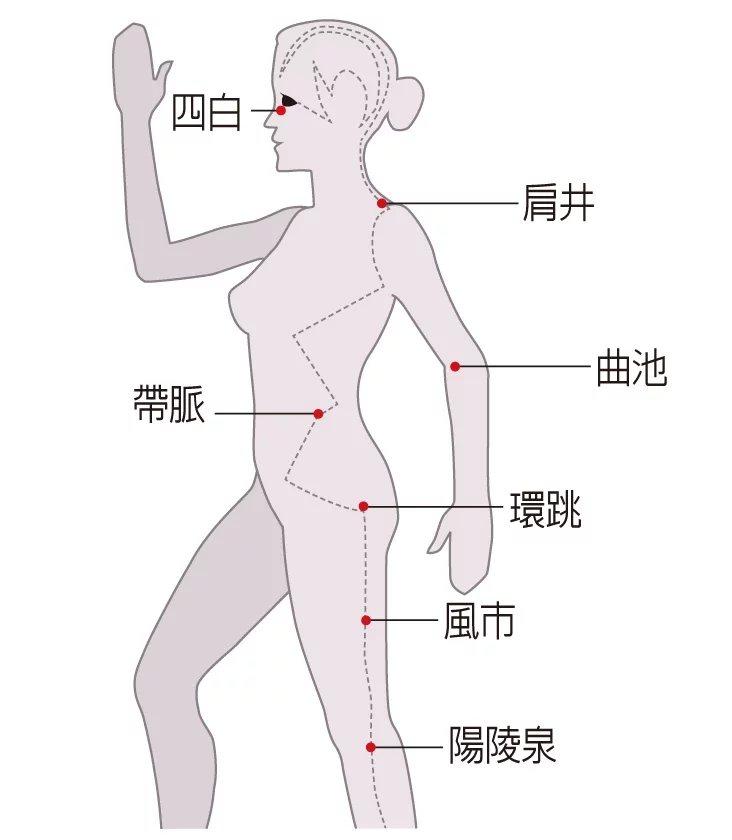 膽經經絡是身體重要的穴道,可以由上往下按壓。  駐診專家╱中醫師鄒瑋倫